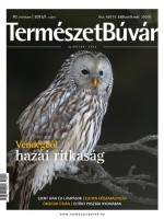 Előfizetés 1 évre a 2015/1. számtól