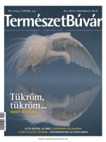 Előfizetés 1 évre a 2015/2. számtól